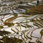 Tarasy ryżowe Yuanyang