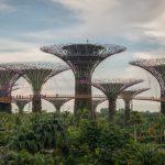Przystanek Singapur